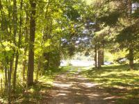 <h2>02. The driveway to the lake 